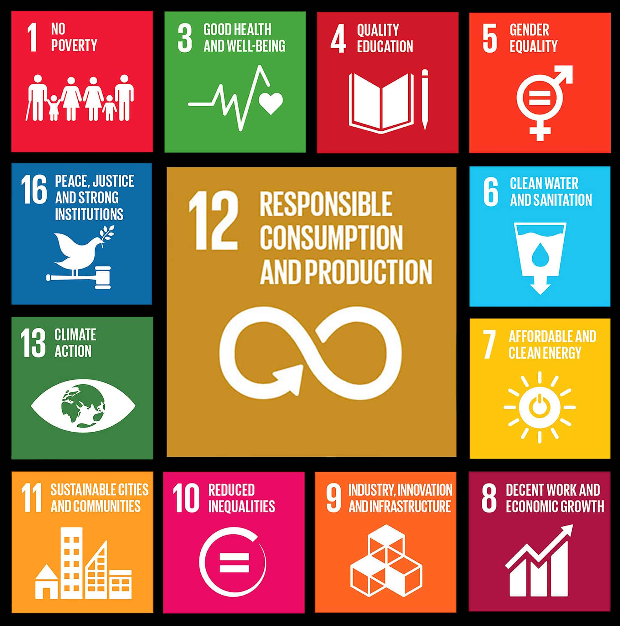 Sustainability, a key element of SDG #12, is integral to making progress in many other goals that affect all our lives.